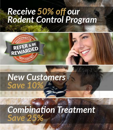 Local Pest Control Promotions