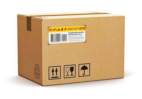 brown cardboard box with a shipping label containing pests
